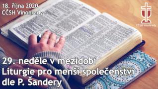 29. neděle v mezidobí - Online přenos bohoslužby
